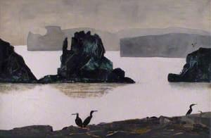 Cormorants at Coast