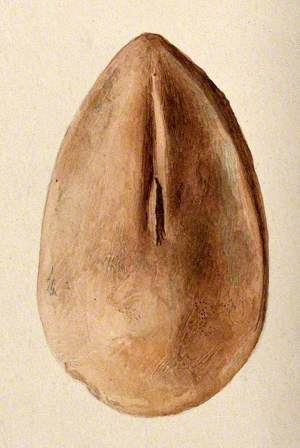 A Clay Figure in the Form of a Vagina Assumed to Have Been Made as a Votive Offering