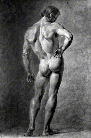 A Standing Male Nude Seen from Behind