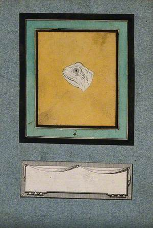 The Head of a Frog, in the Early Stages of a Physiognomic Metamorphosis into an Ideal Head of Apollo