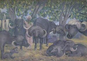 'Buffalos of Bhownuggar. Kattiwah. India. Febr. 1879'