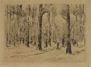 Woods by Scheveningen