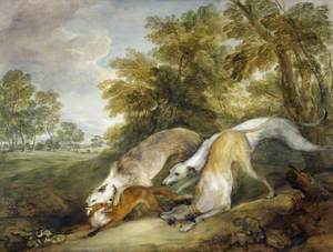 Hounds Hunting a Fox