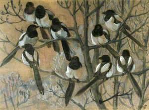 Magpies Roosting