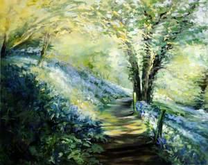 A Walk through the Bluebells and Wild Garlic