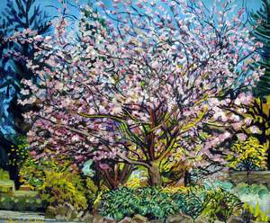 Flowering Cherry Tree near the Glass Church, Millbrook