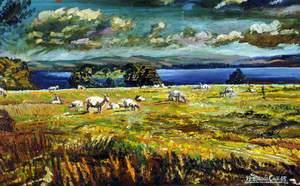 Ballindoon Lands, near Boyle, County Roscommon, Éire