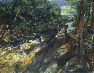 Landscape in Scotland  (Findhorn River)