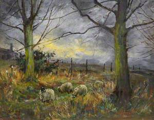 Country Scene with Sheep
