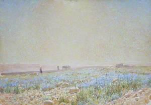 Palestine Landscape (No. 2)