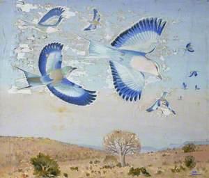 A Flight of Coracias
