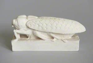 Locust*