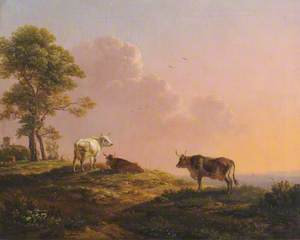 Cows and a Tree on the Crest of a Hill against a Sunset
