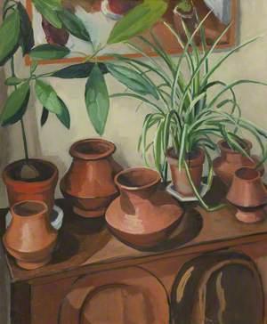 Plant Pots/Ferns