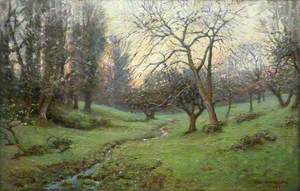 The Orchard at Prislow