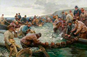 Tucking a School of Pilchards (The Tuck Boat)