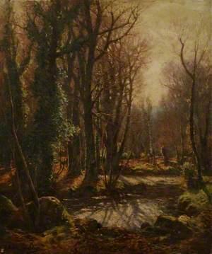 Autumnal Woodland Scene