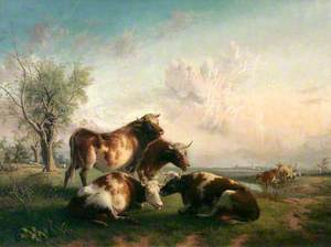 Three Cows and a Bull