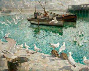 Wheeling Gulls, Glittering Water