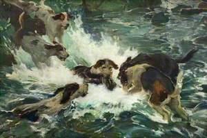 Otter Hunting, the Kill