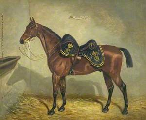 'Napper Tandy' of the 9th Lancers