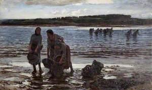 Kelp Gatherers