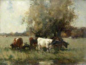 Cattle by a Clump of Willows