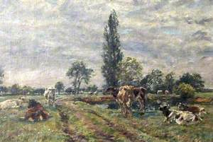 Essex Meadows