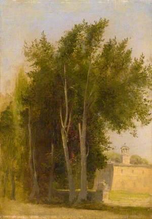 Cypresses at L'Ariccia, Italy