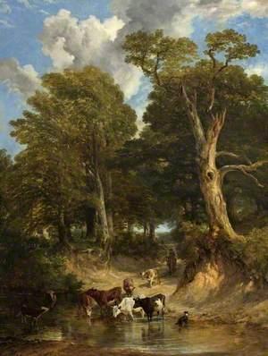 Oak Tree Ford