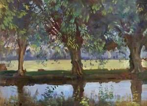 Willows at Flatford, Suffolk