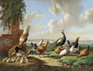 Fowl in a Landscape