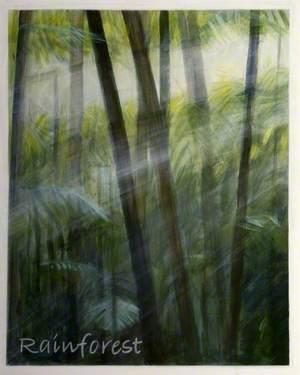 'Dreams of Australia' Series, Rainforest