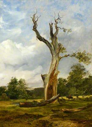 The Blasted Tree