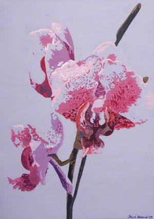 Orchid Study 1
