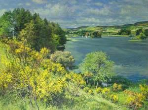 Balgavies Loch