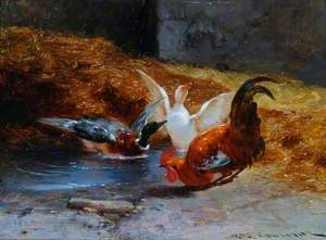 A Cockerel with Two Ducks