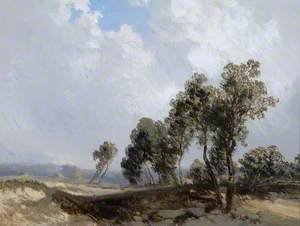 Landscape with a Cloudy Sky