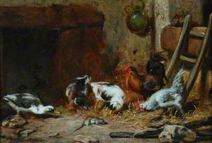 Ducks and Hens with a Dead Rat