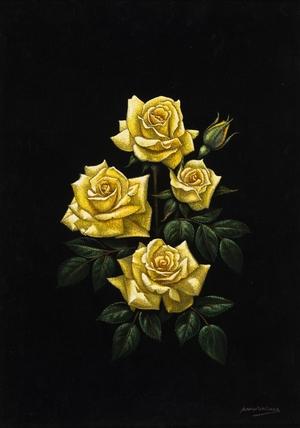 Yellow Roses on Black Velvet
