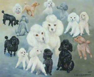 Poodlemania