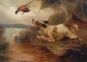 Dog and Pheasant