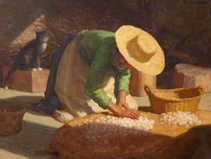 Sorting Garlic