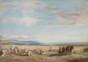 Harvest in Arran