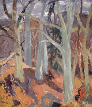 Woods at Arniston, Midlothian
