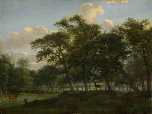 Wooded Park Landscape with Deer