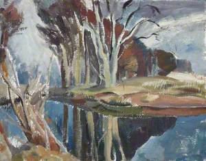 Beech Tree Reflections