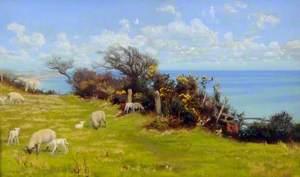 Springtime (Cornwall)