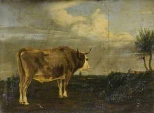 Bull in a Landscape