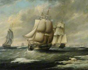 Liverpool Whaler